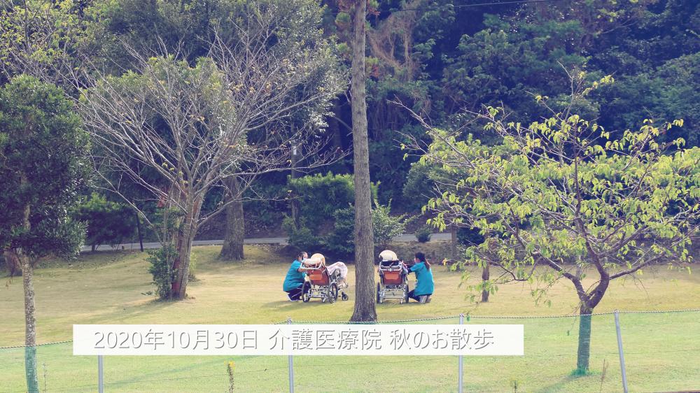 【介護医療院】秋のお散歩